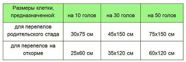 Размеры клеток