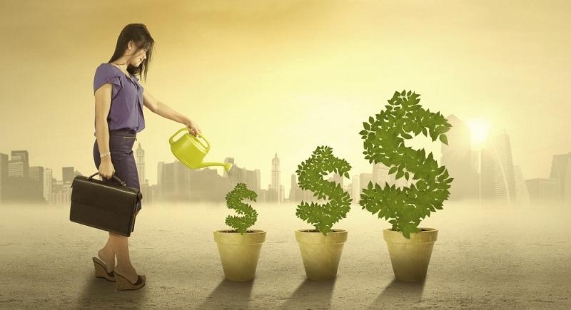Сегодня существует множество бизнес-направлений, подходящих начинающим предпринимателям