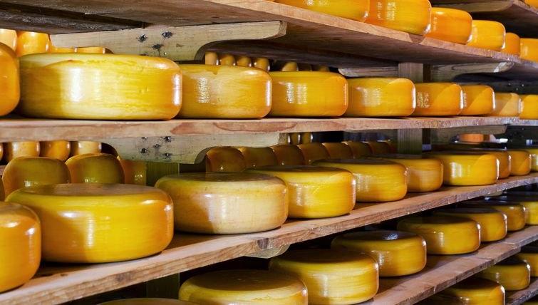 Полки для хранения сыра