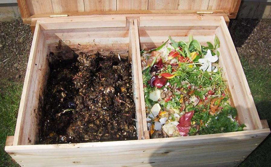 Разведение червей в деревянном ящике