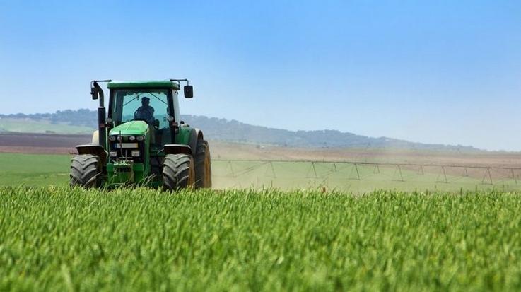 Крестьянское (фермерское) хозяйство представляет собой семейный бизнес по производству и продаже сельскохозяйственной продукции