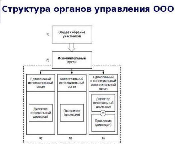 ООО - структура управления