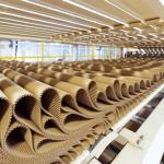 Идея для бизнеса: производство гофрированного картона