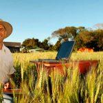Советы фермеру: как выжить среди крупных холдингов?